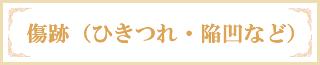 傷跡(ひきつれ・陥凹など)